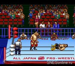 Zennihon Pro Wrestling 2 – 3 4 Budoukan