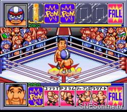 Zennihon Pro Wrestling – Fight da Pon!