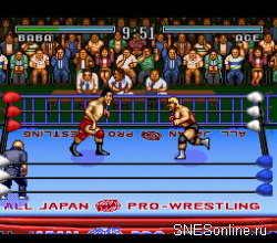 Zennihon Pro Wrestling
